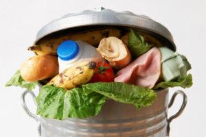 food in trashcan